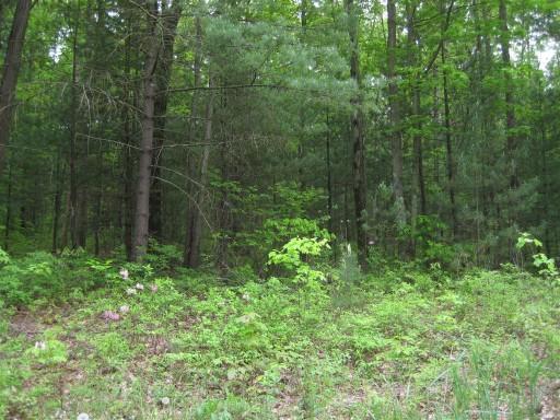 406 Pine Grove Rd, GARDNERS, 17324, PA